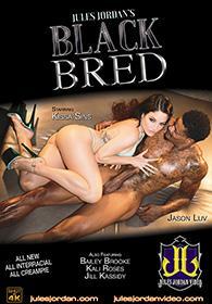 Black Bred DVD